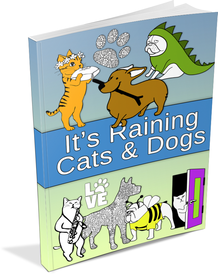 It\'s Raining Cats & Dogs Coloring Book & Journal Package